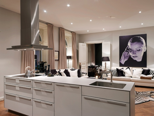 alluring-and-sumptuous-a-luxury-apartment-5