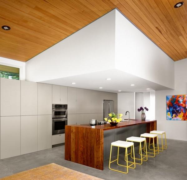American modern lake house  (7)