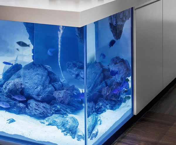 An aquarium kitchen island that makes a splash  (4)