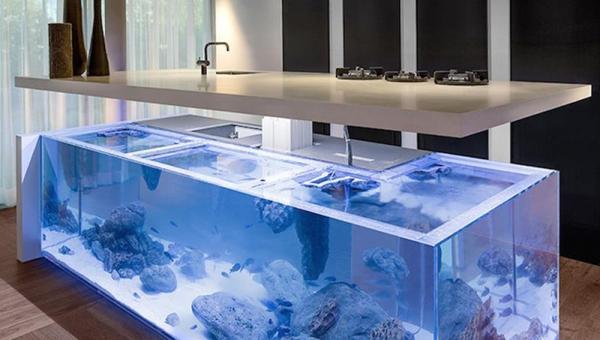 An aquarium kitchen island that makes a splash  (5)
