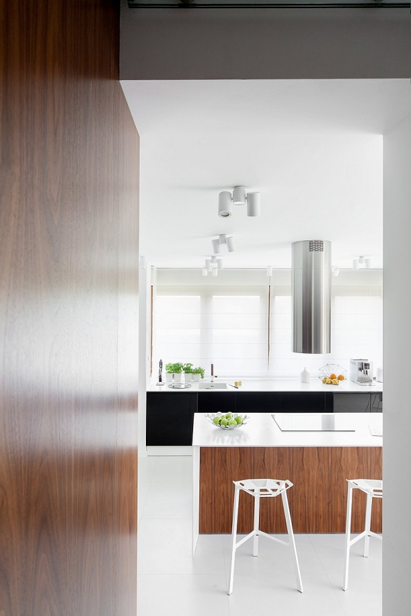 modern house design (11)