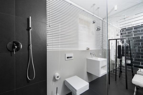 modern house design (17)