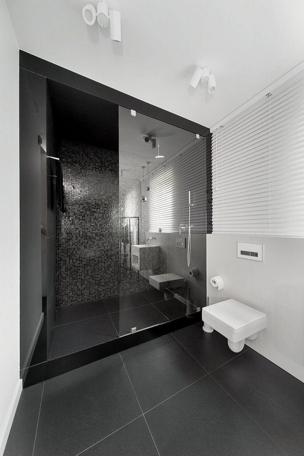 modern house design (19)