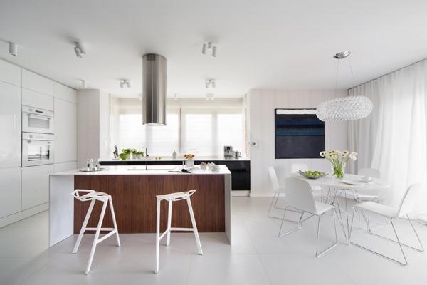 modern house design (8)
