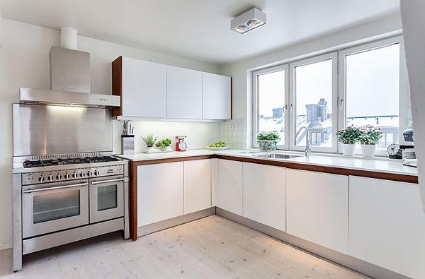attic-apartment-design-11