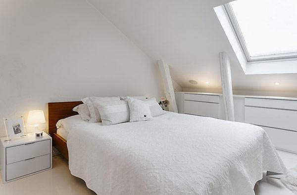 attic-apartment-design-6