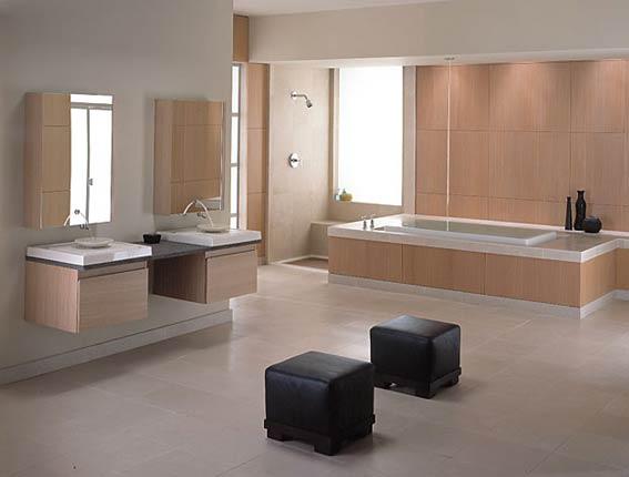 Bathrooms By Kohler 8