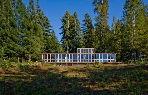 California dream house in the woods  (1)