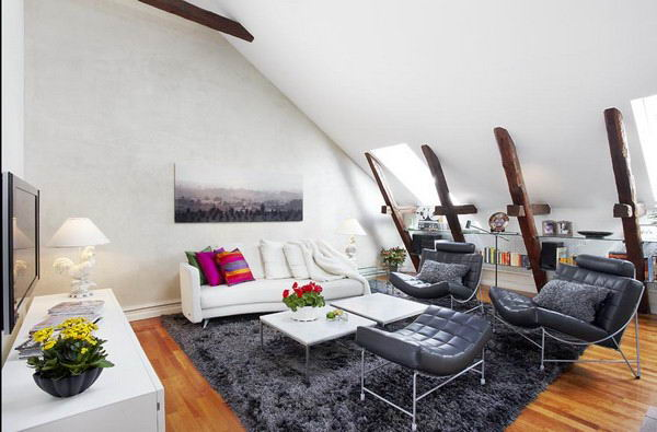 contemporary-style-and-cozy-feeling-under-a-sloped-roof-1