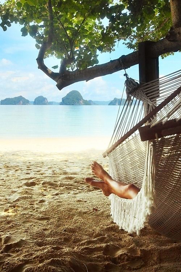 Delightful hammock inspiration  (6)