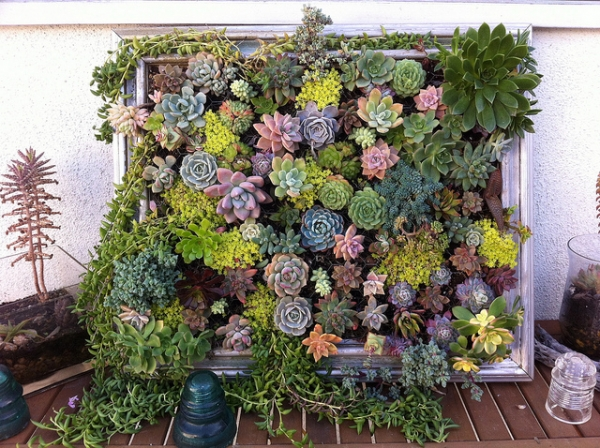 diy-vertical-succulent-garden-11