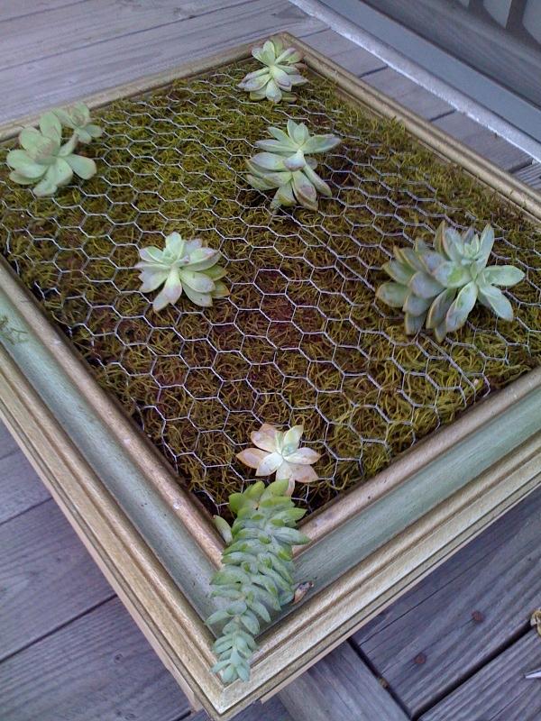 diy-vertical-succulent-garden-8
