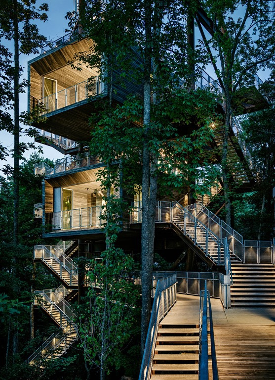 Innovative Tree House Design Adorable Home