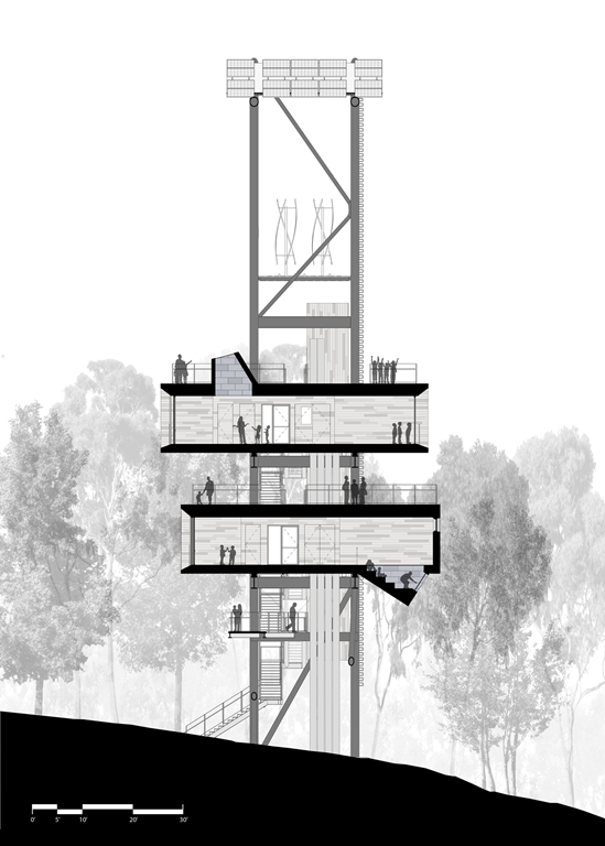element-of-play-in-this-innovative-tree-house-design-6