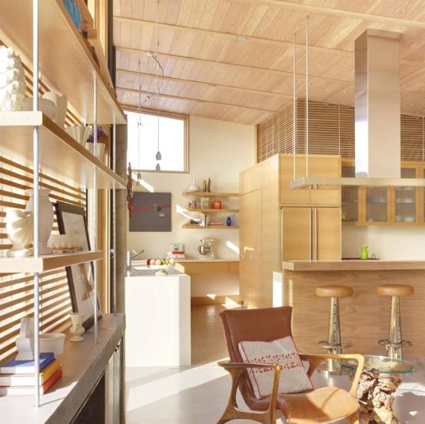 environmentally-friendly-home-design-on-the-californian-hills-12