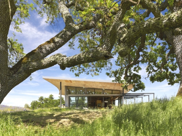 environmentally-friendly-home-design-on-the-californian-hills-8