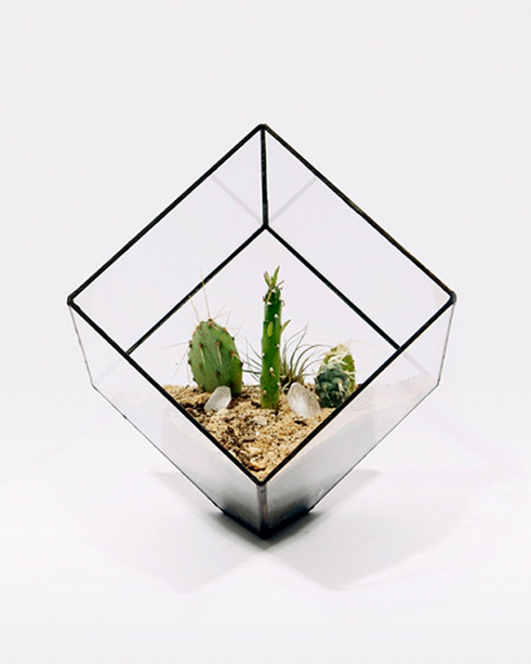 eye-catching-cube-planter-2