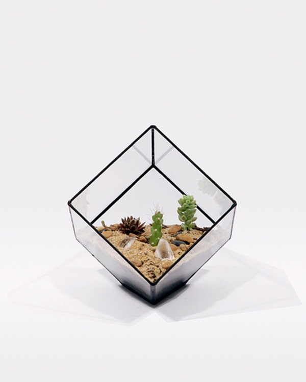 eye-catching-cube-planter-3