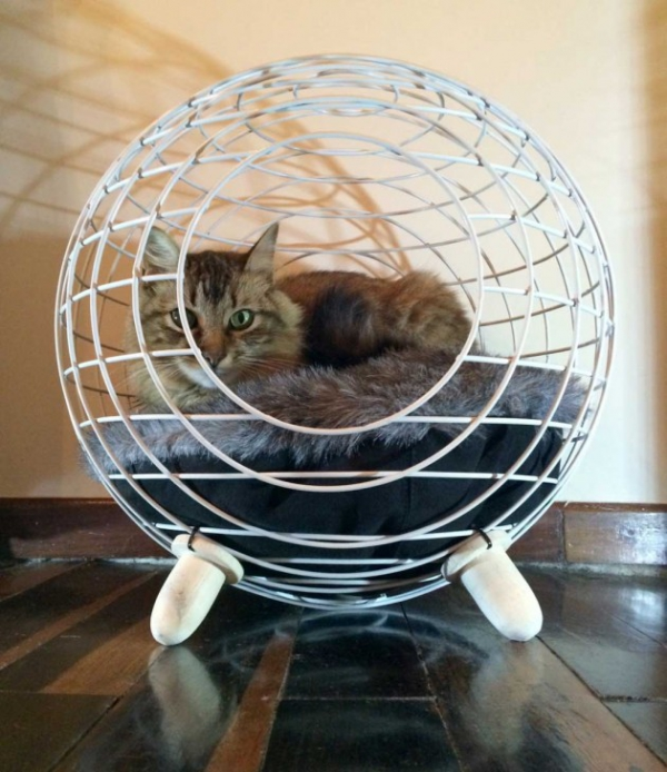 modern cat bed (1)