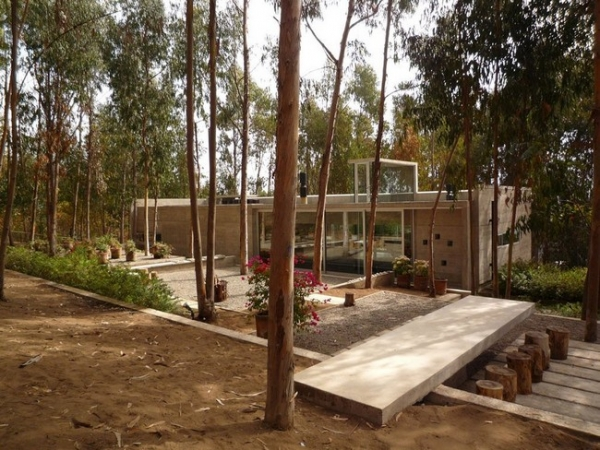 chilean-forest-house-1