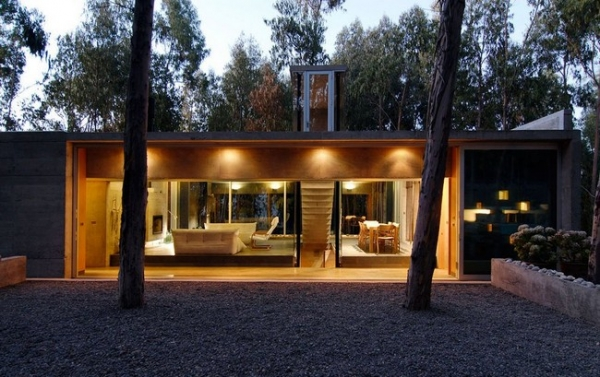 chilean-forest-house-15