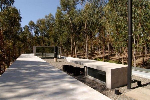 chilean-forest-house-4