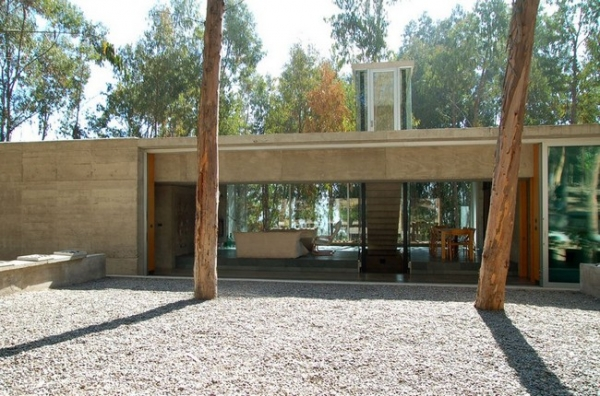 chilean-forest-house-9