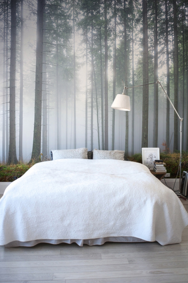 forest wall murals for a serene home decor adorable home forest wall murals woodland wallpapers wallpaperink co uk