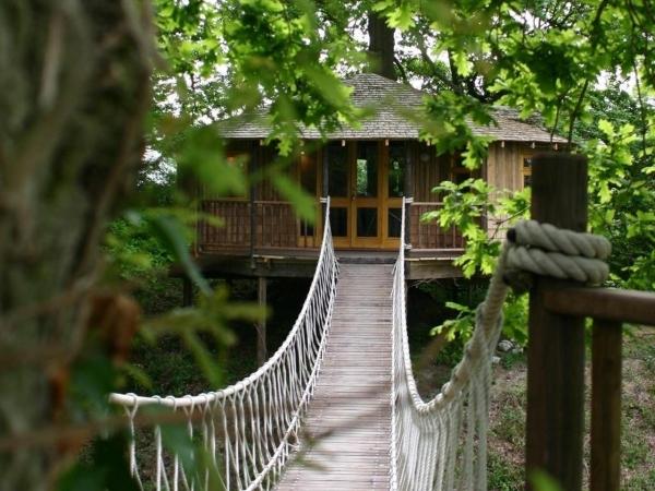 getaway-in-this-huge-tree-house-2