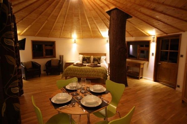 getaway-in-this-huge-tree-house-6