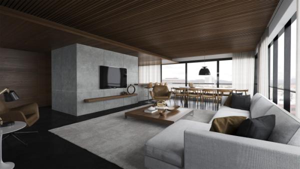 striking modern living rooms (3).png