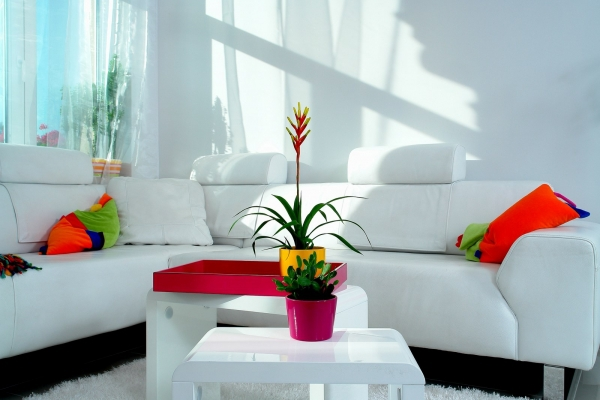 Interior design tips that promise to transform your home (7)