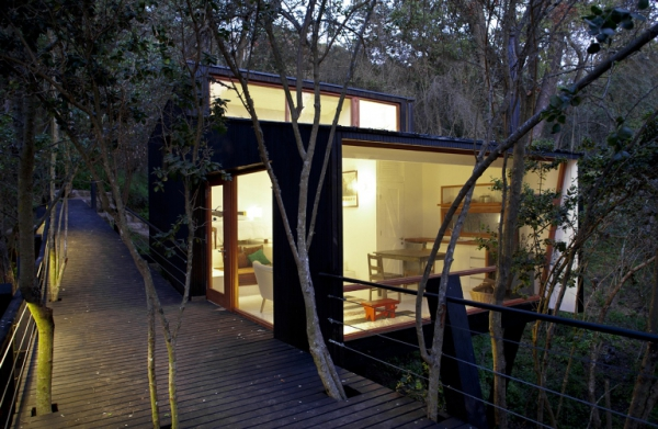 intriguing-elevated-house-in-the-woods-3