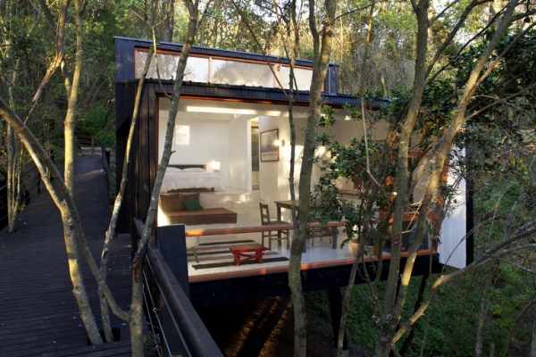 intriguing-elevated-house-in-the-woods-4