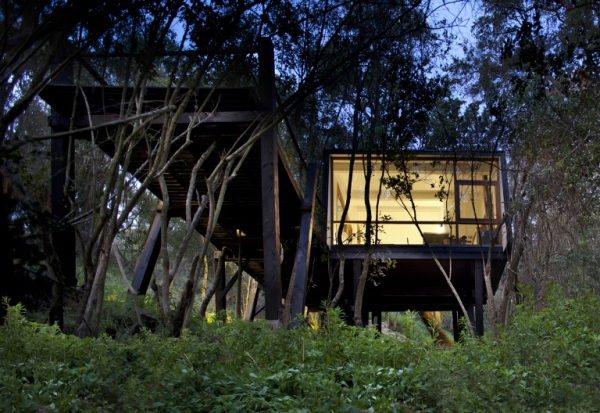 intriguing-elevated-house-in-the-woods-6
