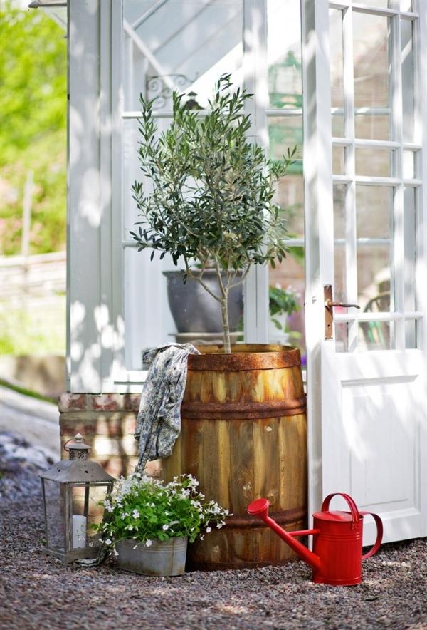 greenhouse-design-2