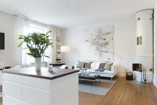 limited-space-apartment-featuring-white-interior-design-5