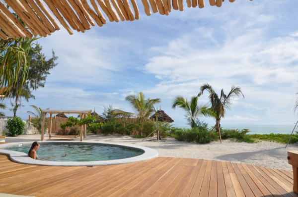 Luxury villas in Tanzania (11)