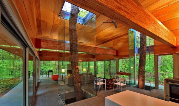 glass forest home (4)