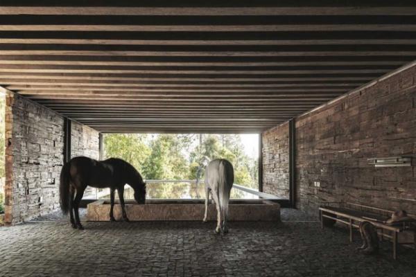 natural home architecture (10)