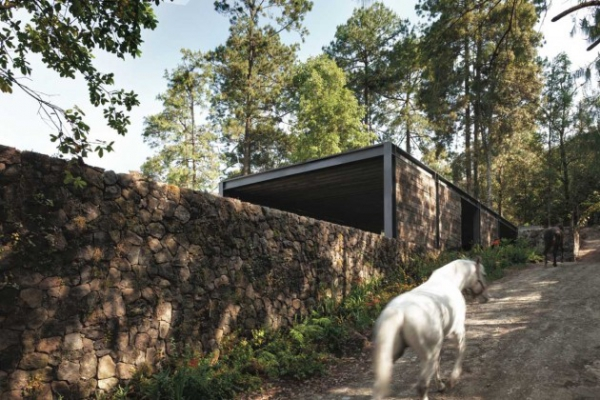 natural home architecture (11)