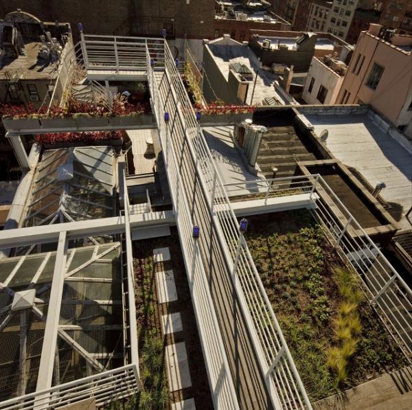 roof-garden-oasis-5