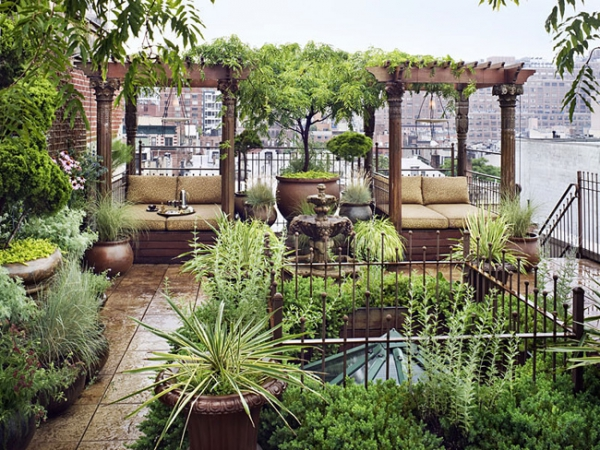 Rooftop Garden Oasis Adorable Home