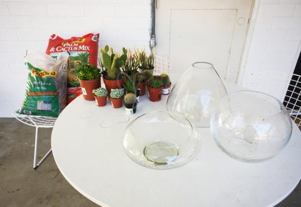 simple-and-beautiful-diy-terrarium-1