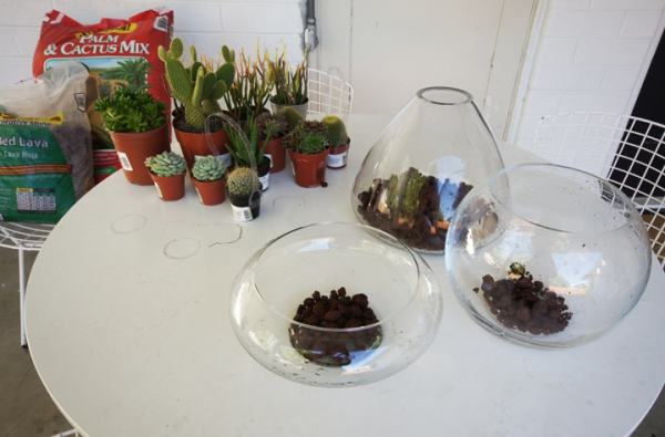 simple-and-beautiful-diy-terrarium-2