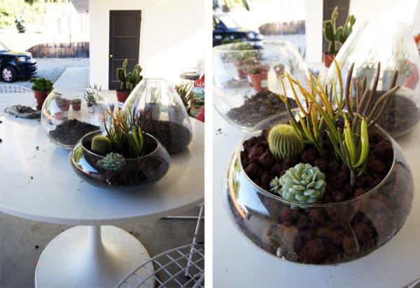simple-and-beautiful-diy-terrarium-4