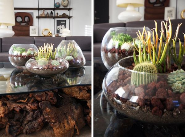 simple-and-beautiful-diy-terrarium-6