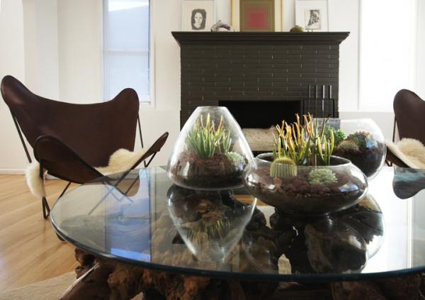 simple-and-beautiful-diy-terrarium-7