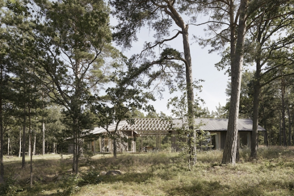 Single volume house in the woods  (1)