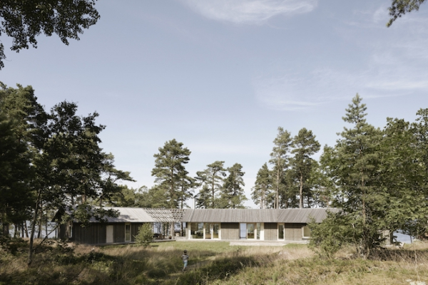 Single volume house in the woods  (4)